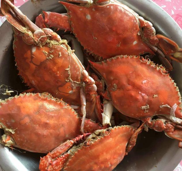 到丹东东港旅游-丹东东港吃海鲜攻略!